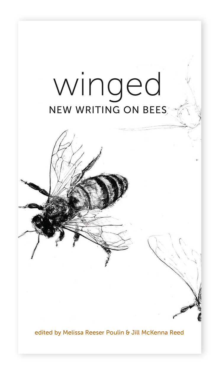 winged writers enlighten essay On this page you may learn how to write an environmental essay who also happen to be excellent writers written to enlighten the reader about the things.