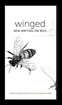 wingedbookJacket
